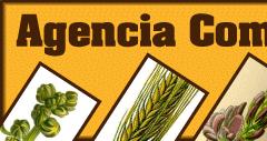 Agencia Comercial Vilalta