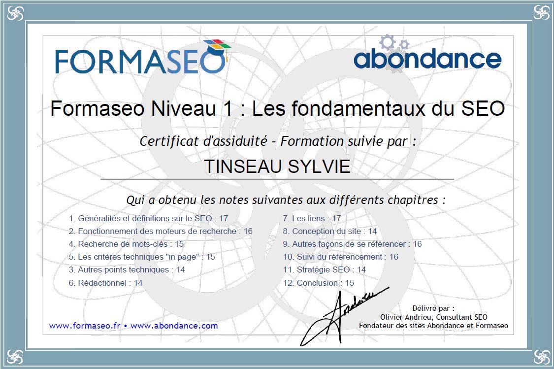 Certificat de Formation - Fondamentaux du SEO Niv1 - Formaseo